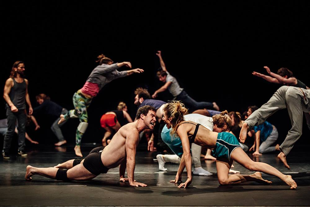 Formation «From Act to Acting» / Jan Fabre Teaching Group